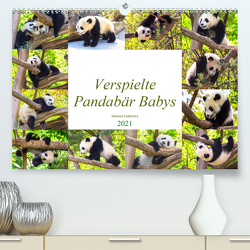 Pandabär Babys (Premium, hochwertiger DIN A2 Wandkalender 2021, Kunstdruck in Hochglanz) von Gatterwe,  Simone
