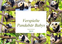 Pandabär Babys (Wandkalender 2019 DIN A4 quer) von Gatterwe,  Simone