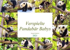 Pandabär Babys (Wandkalender 2021 DIN A2 quer) von Gatterwe,  Simone