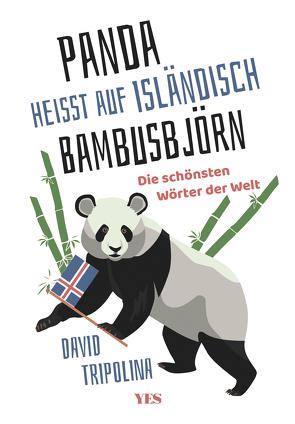 »Panda« heißt auf Isländisch »Bambusbjörn« von Tripolina,  David