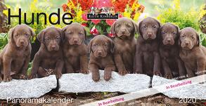 Panoramakalender Keith Kimberlin Hunde 2020