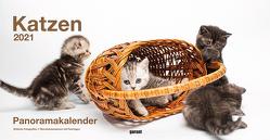 Panoramakalender Keith Kimberlin Katzen 2021