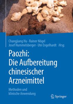 Paozhi: Die Aufbereitung chinesischer Arzneimittel von Engelhardt,  Ute, Hu,  Changjiang, Hummelsberger,  Josef, Nögel,  Rainer