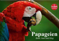 Papageien. Bunt, laut und klug (Wandkalender 2020 DIN A2 quer) von Stanzer,  Elisabeth