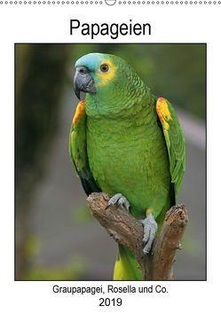 Papageien – Graupapagei, Rosella und Co. (Wandkalender 2019 DIN A2 hoch) von Lindert-Rottke,  Antje