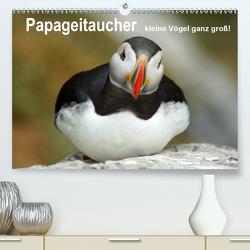 Papageitaucher – kleine Vögel ganz groß! (Premium, hochwertiger DIN A2 Wandkalender 2020, Kunstdruck in Hochglanz) von Paul - Babett's Bildergalerie,  Babett