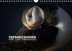Papageitaucher: Puffin – Lundi – Fratercula arctica (Wandkalender 2018 DIN A4 quer) von Preißler,  Norman