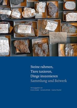 Parerga und Paratexte / Steine rahmen, Tiere taxieren, Dinge inszenieren von Knebel,  Kristin, Ortlieb,  Cornelia, Püschel,  Gudrun