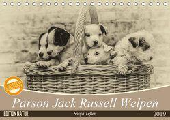 Parson Jack Russel Welpen (Tischkalender 2019 DIN A5 quer) von Teßen,  Sonja