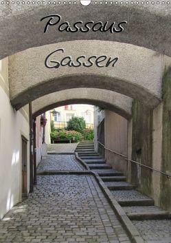 Passaus Gassen (Wandkalender 2019 DIN A3 hoch) von ~bwd~