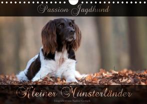 Passion Jagdhund – Kleiner Münsterländer (Wandkalender 2020 DIN A4 quer) von Gerlach,  Nadine