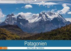 Patagonien – Am Puls der Wildnis (Wandkalender 2019 DIN A2 quer) von Neetze,  Akrema-Photograhy