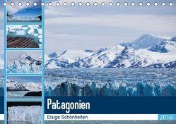 Patagonien. Eisige Schönheiten (Tischkalender 2019 DIN A5 quer) von Reuke,  Sabine