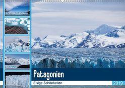Patagonien. Eisige Schönheiten (Wandkalender 2019 DIN A2 quer) von Reuke,  Sabine
