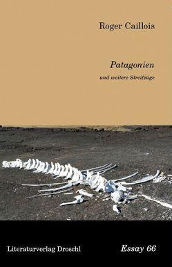 Patagonien und weitere Streifzüge von Caillois,  Roger, Schmidt,  Rainer G