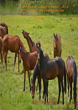 Paul und das wilde Pferd / Brieko übernimmt die wilde Pferdeherde von Hase,  Doreen