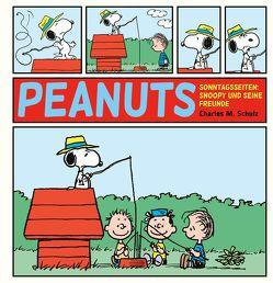 Peanuts Sonntagsseiten 2: Snoopy und seine Freunde von Schulz,  Charles M., Wieland,  Matthias