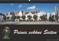 Peines schöne Seiten (Wandkalender 2019 DIN A2 quer) von Scholz,  Frauke