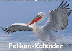 Pelikan-Kalender (Wandkalender 2019 DIN A2 quer) von Wolf,  Gerald
