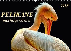 Pelikane – mächtige Gleiter (Wandkalender 2018 DIN A3 quer) von Roder,  Peter