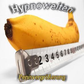 Penisvergrößerung /Penisverlängerung (Hypnose CD) von Gorka,  Michael