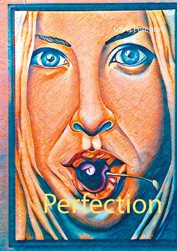 Perfection von Peregrin,  Chris
