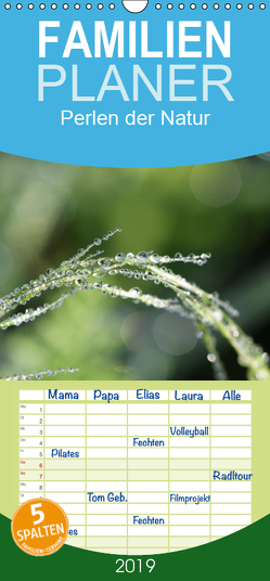 Perlen der Natur – Familienplaner hoch (Wandkalender 2019 , 21 cm x 45 cm, hoch) von Nitzold-Briele,  Gudrun