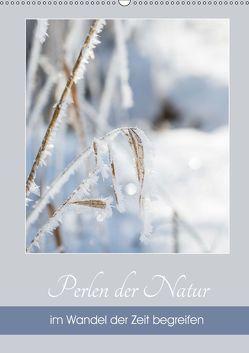 Perlen der Natur im Wandel der Zeit begreifen (Wandkalender 2019 DIN A2 hoch) von Reiter,  Herbert, Strudl,  Martina