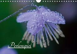 Perlenspiel (Wandkalender 2019 DIN A4 quer) von Kaestner,  Karin