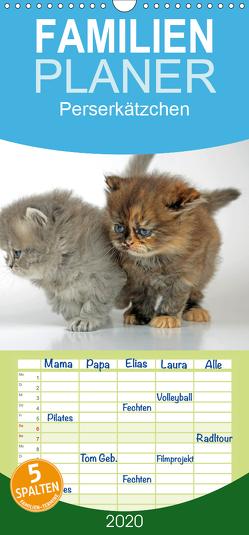 Perserkätzchen – Familienplaner hoch (Wandkalender 2020 , 21 cm x 45 cm, hoch) von Eppele,  Klaus
