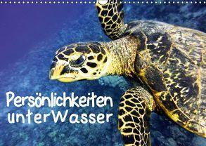 Persönlichkeiten unter Wasser (Wandkalender 2018 DIN A3 quer) von Hess,  Andrea