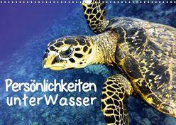 Persönlichkeiten unter Wasser (Wandkalender 2019 DIN A3 quer) von Hess,  Andrea