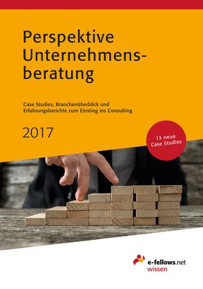 Perspektive Unternehmensberatung 2017 von Friedl,  Anna, Hies,  Michael
