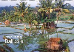 Peter Fischer – Bali 2019 (Wandkalender 2019 DIN A2 quer) von Fischer,  Peter