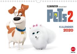 Pets 2 (Wandkalender 2020 DIN A4 quer) von Heye