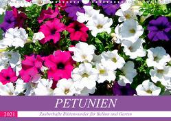Petunien. Zauberhafte Blütenwunder für Balkon und Garten (Wandkalender 2021 DIN A3 quer) von Hurley,  Rose