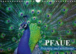 Pfaue. Prächtig und schillernd (Wandkalender 2018 DIN A4 quer) von Stanzer,  Elisabeth