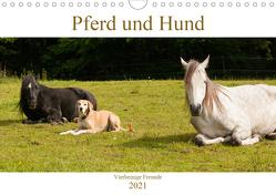 Pferd und Hund – Vierbeinige Freunde (Wandkalender 2021 DIN A4 quer) von Bölts,  Meike