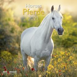 Pferde 2021 – Wand-Kalender – Broschüren-Kalender – A&I – 30×30 – 30×60 geöffnet – Tier-Kalender