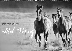 Pferde 2021 Wild Thing (Wandkalender 2021 DIN A2 quer) von Peters,  Sabine