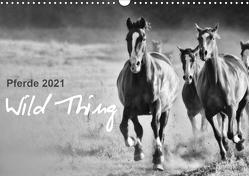 Pferde 2021 Wild Thing (Wandkalender 2021 DIN A3 quer) von Peters,  Sabine