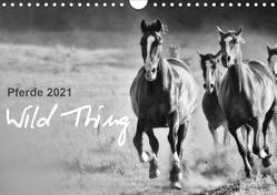 Pferde 2021 Wild Thing (Wandkalender 2021 DIN A4 quer) von Peters,  Sabine