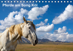 Pferde am Song Köl (Tischkalender 2019 DIN A5 quer) von Rusch,  Winfried
