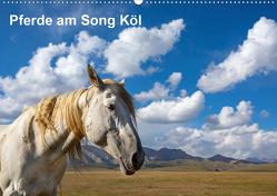 Pferde am Song Köl (Wandkalender 2020 DIN A2 quer) von Rusch,  Winfried