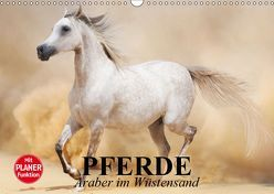 Pferde. Araber im Wüstensand (Wandkalender 2019 DIN A3 quer)