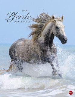 Pferde Classics – Kalender 2019 von Heye, Stuewer,  Sabine