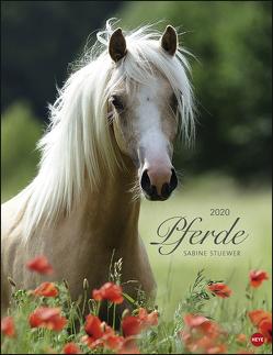 Pferde Classics Kalender 2020 von Heye, Stuewer,  Sabine