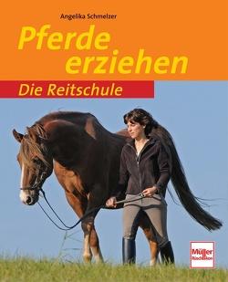 Pferde erziehen von Schmelzer,  Angelika
