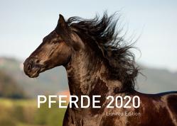 Pferde Exklusivkalender 2020 (Limited Edition) von Sarti,  Alessandra