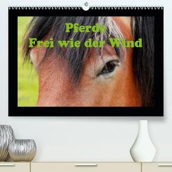 Pferde Frei wie der Wind (Premium, hochwertiger DIN A2 Wandkalender 2021, Kunstdruck in Hochglanz) von Wolf,  Jan